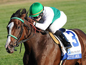 Fugitive Angel Seeks Fifth Straight Victory