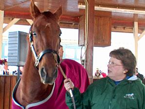 Funny Cide Heats Up Horse Park