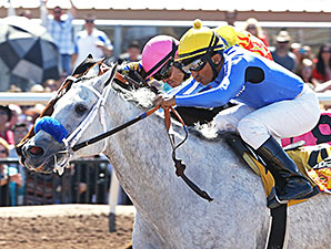 Funnyoushouldask wins the La Coneja Stakes.