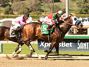 Fury Kapcori wins the Santana Mile Stakes.