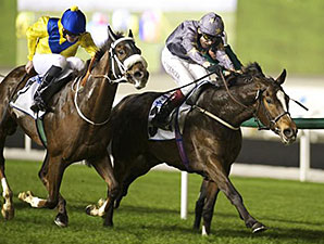 Gabrial wins the 2014 Property Weekly Handicap.