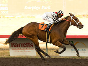Gallant Gent wins the 2009 C B Afflerbaugh Stakes.