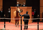 Agent Casse Goes to $375,000 for Gamay Noir