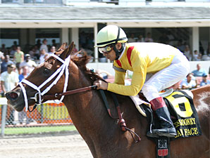 Game Face Seeks Fourth Stakes Win This Year