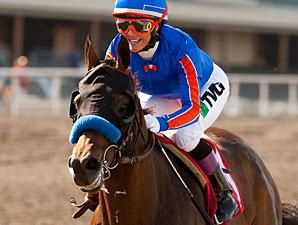 Game On Dude Leads Baffert Workers at 'Anita