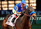 Baffert Nixes Big &#39;Cap for Dubai-Bound &#39;Dude