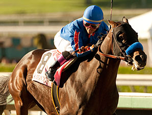 Baffert Upbeat on Dubai After 'Dude' Works