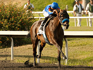 Game On Dude Has Eventful Drill at Del Mar