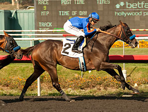 Game On Dude Seeks Third Straight Gold Cup