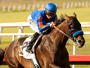 Game On Dude in Final Pacific Classic Work