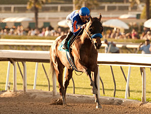 Game On Dude wins the 2013 Santa Anita Handicap.