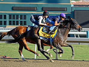 'Dude' Works, Baffert Says Gelding is Ready