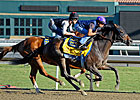 &#39;Dude&#39; Works, Baffert Says Gelding is Ready