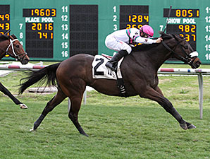 Gantry wins the 2014 Colonel Power Stakes.