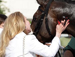 Gantry wins the 2012 Smile Sprint Handicap.