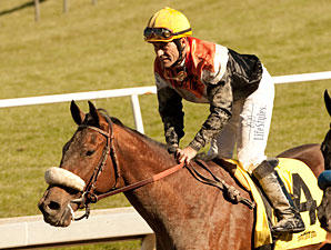 Gary Stevens Gets First Comeback Winner