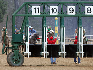 Oaklawn Race Stopped After Gate Problem