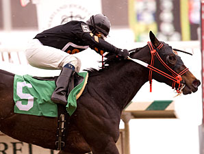 Gator Prowl ridden by Harry Vega wins the $70,000 Marshua Stakes for three-year-old fillies at Laurel Park in Maryland on Monday, Feb. 15, 2010.