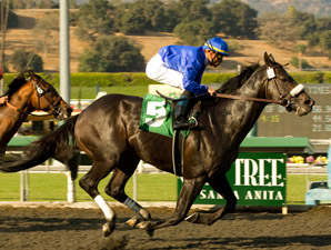 Godolphin's Gayego One to Beat in Triple Bend
