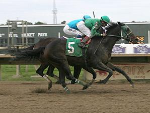 Geeky Gorgeous wins the 2013 Cornucopia Stakes.