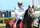 Paynter, Gemologist Work for Haskell