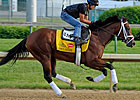 Kentucky Derby Analysis - Exceed the Speed