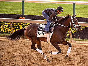 General a Rod - Pimlico, May 13, 2014.