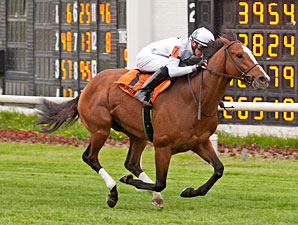 Ungraded Centaur Stakes Lures Strong Group
