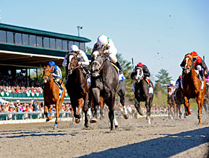 Proposed Network to Offer 80 Racing Feeds