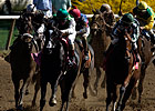Racing Regulators Examine Cobalt Studies