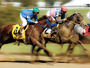 Racing Registers Handle Surge in May