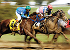 Another Solid Month for U.S. Wagering, Purses