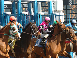 New York Panel to Adopt, Amend Racing Rules