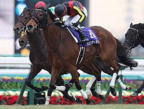Gentildonna wins the 2014 Arima Kinen.