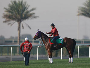 Gentildonna - Dubai March 25, 2013.