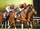 Gentildonna Wins Dramatic Sheema Classic