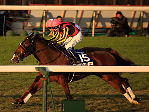 Gentildonna Draws Post 7 in Japan Cup Defense