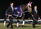 Gentildonna Honored as JRA Horse of the Year