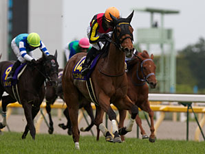 Gentildonna wins the 2012 Yushun Himba Japan Oaks.