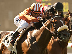 Del Mar Derby Overflows, Split Into Divisions