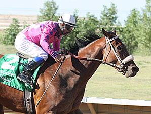 Get Happy Mister wins the 2014 Arapahoe Park Classic.