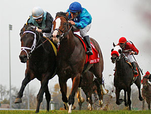 Get Stormy wins the 2009 Commonwealth Turf.