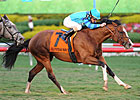 Get Stormy Strikes in Gulfstream Turf &#39;Cap