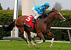 Get Stormy Wires Maker's Mark Mile