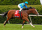 Maker&#39;s Mark Contenders Work at Keeneland