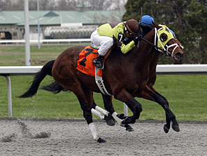 Ghost Is Clear wins the 2011 Hansel.
