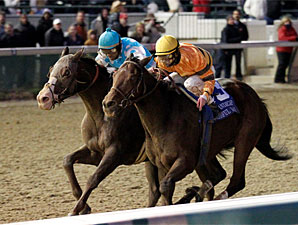 Giant Oak wins the 2010 Clark Handicap via disqualification.