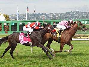 Gig Harbor wins the 2011 Alcatraz.