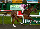 CA Stakes Winner Gig Harbor to Victory Rose