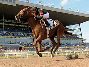 Ginger Brew Romps in Woodbine Oaks